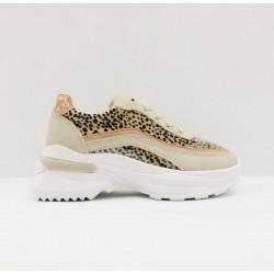 sneaker leo